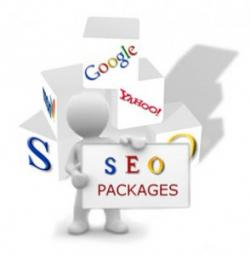 SEO Packages - Free Spirit Media
